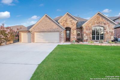 San Antonio TX Single Family Home New: $399,999
