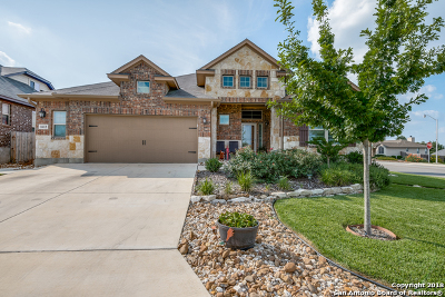 New Braunfels Single Family Home New: 1612 Sun Ledge Way