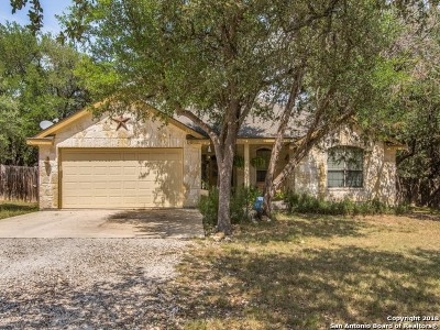 Bandera Single Family Home For Sale: 166 Comanche Path