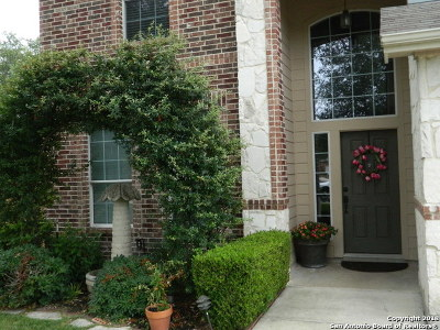 San Antonio Single Family Home For Sale: 835 Point Sunset