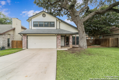 San Antonio TX Single Family Home New: $274,500