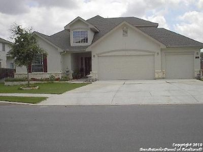 San Antonio TX Single Family Home New: $285,000