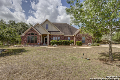 New Braunfels Single Family Home For Sale: 969 Pinnacle Pkwy