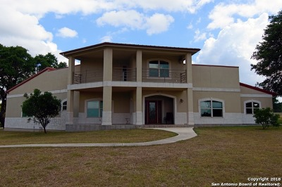 New Braunfels Single Family Home For Sale: 347 River Chase Way