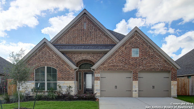 Seguin Single Family Home For Sale: 2904 Glen View