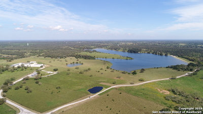 Guadalupe County Farm & Ranch For Sale: 915 Pratt Road