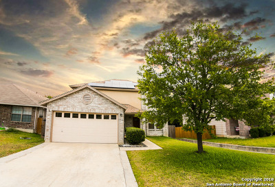 Single Family Home For Sale: 17166 Irongate Rail