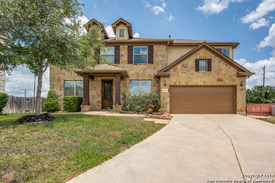 Helotes Single Family Home For Sale: 11611 Massive Mt