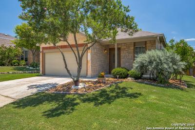 Boerne Single Family Home For Sale: 7646 Mission Ledge