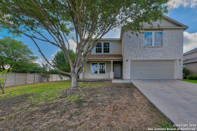 Cibolo Single Family Home For Sale: 120 Stream Crossing
