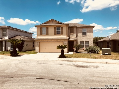 Single Family Home For Sale: 25907 Torch Lily