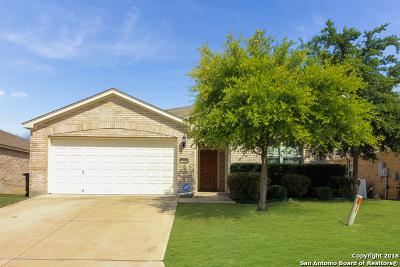 San Antonio Single Family Home For Sale: 22006 Tower Terrace
