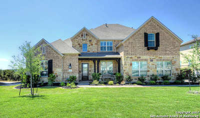 Stonewall Estates, Stonewall Ranch Single Family Home For Sale: 21323 Rembrandt Hill