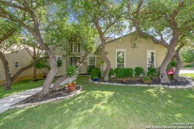 Boerne Single Family Home For Sale: 28023 Vine Cliff