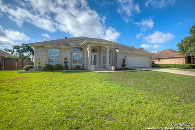 New Braunfels TX Single Family Home Back on Market: $324,999