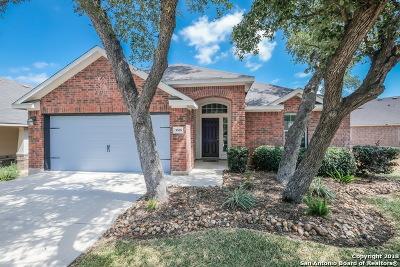 San Antonio Single Family Home For Sale: 5555 Southern Oaks