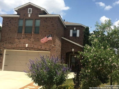 Boerne Single Family Home For Sale: 329 Sandy Shoal