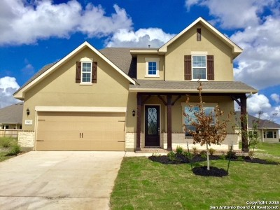 Bexar County Single Family Home Back on Market: 13823 Chester Knoll