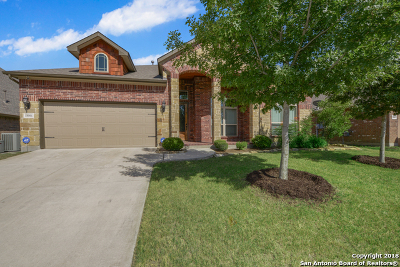 Helotes Single Family Home For Sale: 18006 Bierstadt Mt