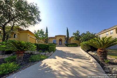San Antonio Single Family Home For Sale: 25138 Callaway