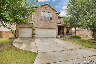 New Braunfels Single Family Home For Sale: 3119 Soledad Ln