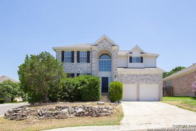 San Antonio Single Family Home For Sale: 2203 Encino Dew