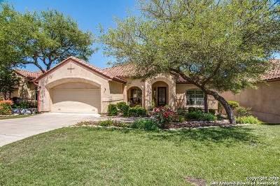 San Antonio Single Family Home For Sale: 3319 Medaris Ln