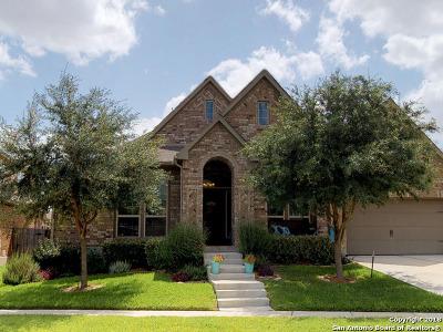 Seguin Single Family Home For Sale: 3046 Hidden Meadow