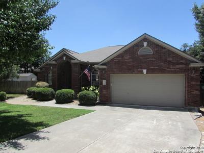 San Antonio Single Family Home New: 21703 Lawrey Dr