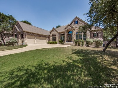 Single Family Home For Sale: 19522 Creekview Oaks