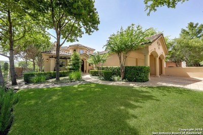 San Antonio Single Family Home New: 81 Champions Ln