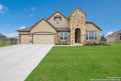 San Antonio Single Family Home For Sale: 29027 San Clemente