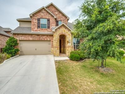 San Antonio Single Family Home For Sale: 18307 Valencia Vis