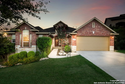 San Antonio Single Family Home New: 23602 Sunset Peak