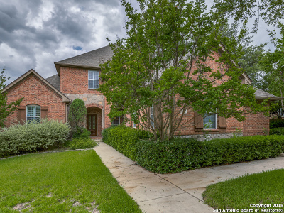 San Antonio Single Family Home New: 203 Roan Spring