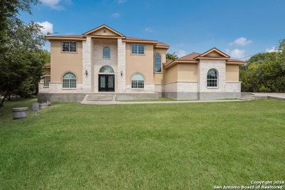 Single Family Home New: 27018 Picolo Pl