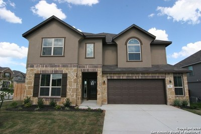Cibolo Single Family Home New: 556 Saddle Vista
