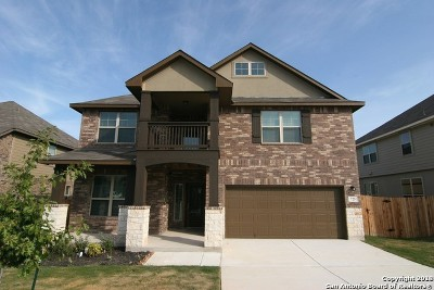 Cibolo Single Family Home New: 725 Morgan Run