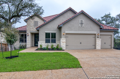 San Antonio Single Family Home New: 25306 Estancia Circle