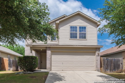 Helotes Single Family Home New: 10307 Roseangel Ln