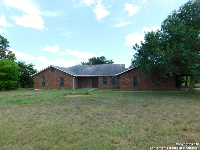 Seguin Single Family Home For Sale: 2605 Leissner School Rd