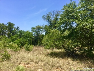 Atascosa County Residential Lots & Land For Sale: 380 Inwood