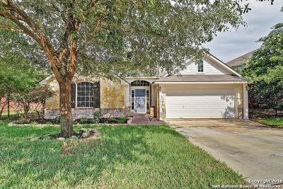San Antonio Single Family Home New: 21935 Dolomite Dr