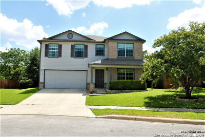 Cibolo Single Family Home New: 141 Weeping Way