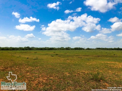 Atascosa County Farm & Ranch New: 001 Cr 308