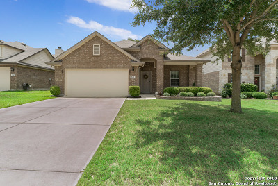 Cibolo Single Family Home New: 241 Fritz Way