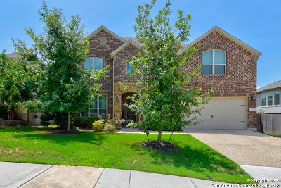 Bexar County Single Family Home For Sale: 25706 Coreopsis