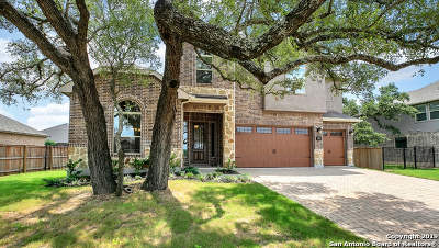 New Braunfels Single Family Home New: 1923 Gibraltar