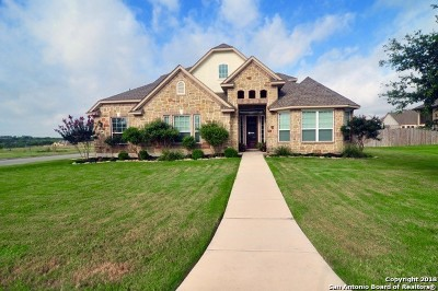 Guadalupe County Single Family Home For Sale: 3304 Ashley Way