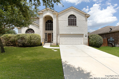 Cibolo Single Family Home New: 413 Eagle Flight